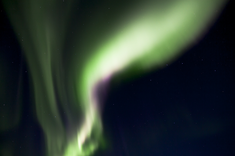 https://lainjacksonphotography.com/esp/2017_spitzbergen/07_/016