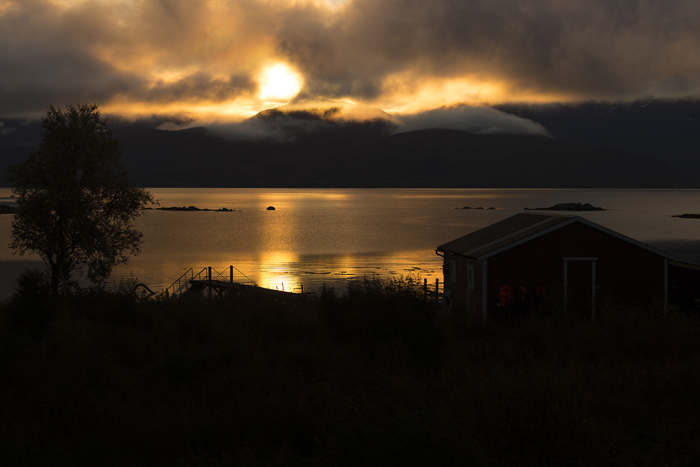 https://lainjacksonphotography.com/esp/2017_spitzbergen/11/001
