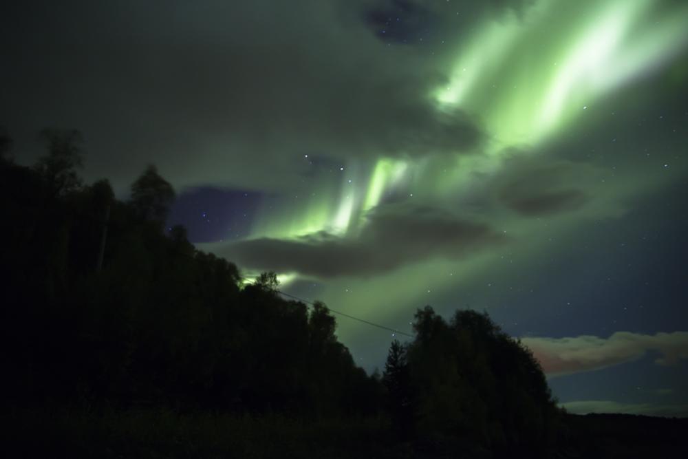 https://lainjacksonphotography.com/esp/2017_spitzbergen/14/008