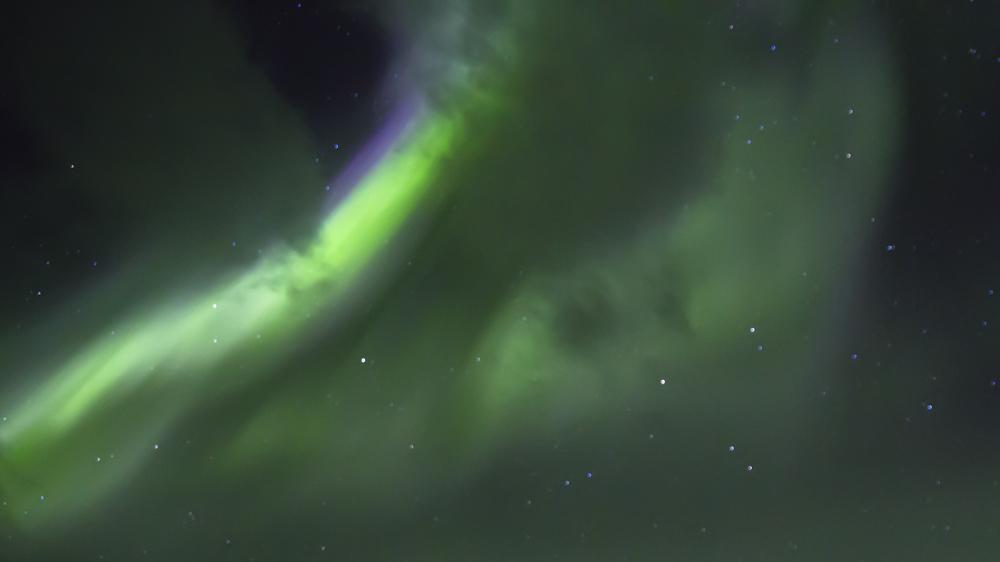 https://lainjacksonphotography.com/esp/2017_spitzbergen/14/011